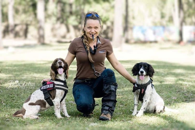Olivia Woosnam from OWAD Enviroment with her professional Koala detection dogs Taz and Missy